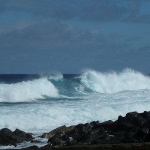 Pacific Ocean Wave in Hawai'i